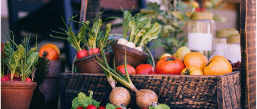 E-commerce del cibo, in Italia si afferma il biologico - WeForGreen Sharing